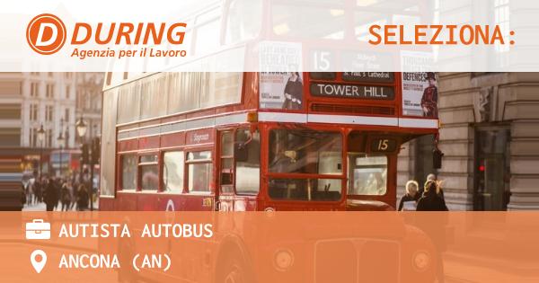 OFFERTA LAVORO - autista autobus - ANCONA (AN)