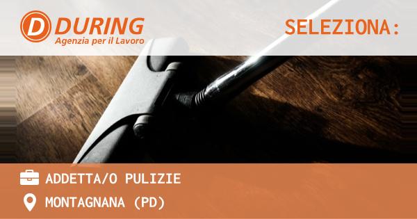 OFFERTA LAVORO - ADDETTA/O PULIZIE - MONTAGNANA (PD)