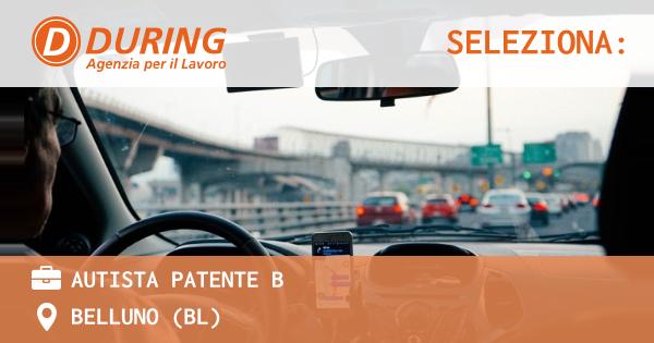 OFFERTA LAVORO - AUTISTA PATENTE B - BELLUNO (BL)