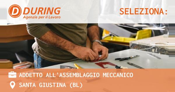 OFFERTA LAVORO - ADDETTO ALL'ASSEMBLAGGIO MECCANICO - SANTA GIUSTINA (BL)