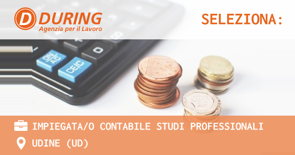 OFFERTA LAVORO - IMPIEGATA/O CONTABILE STUDI PROFESSIONALI - UDINE (UD)