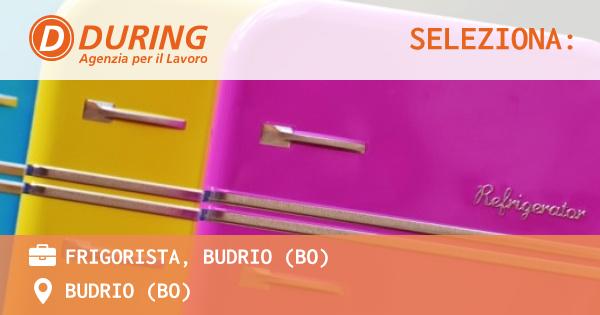 OFFERTA LAVORO - FRIGORISTA, BUDRIO (BO) - BUDRIO (BO)