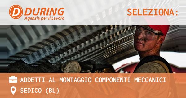 OFFERTA LAVORO - ADDETTI AL MONTAGGIO COMPONENTI MECCANICI - SEDICO (BL)