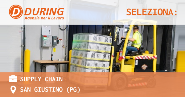 OFFERTA LAVORO - SUPPLY CHAIN - TORRE D'ISOLA (PV)