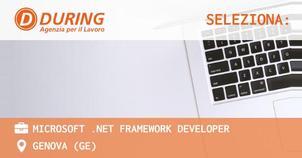Microsoft .NET Framework Developer