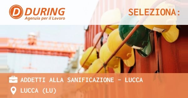 Cerco Lavoro Come Autista Patente C Lucca